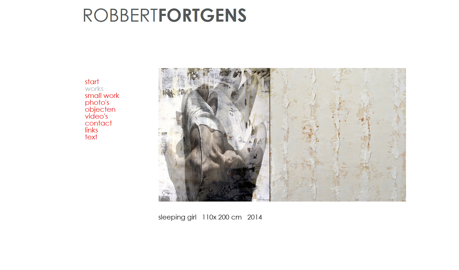 Robbertfortgens website